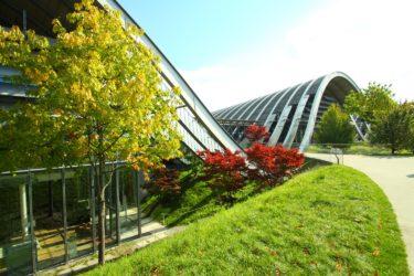 パウルクレーセンターZentrum Paul Kleeの(チルドレンズミュージアム体験プログラム)を体験