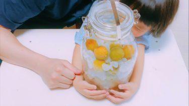 まろやかで甘い香りの梅シロップの作り方♪黄色がかった梅使用